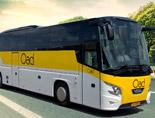 dagtocht met de bus